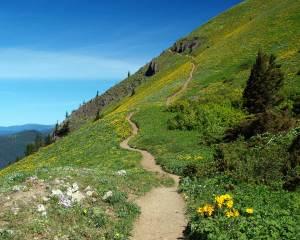 mountain-path